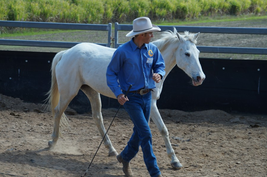 BLS-Horsemanship-why-circling-circle-Training-Online-Academy-Training-videos