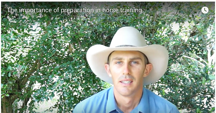 importance-of-preparation-in-horse-training-video