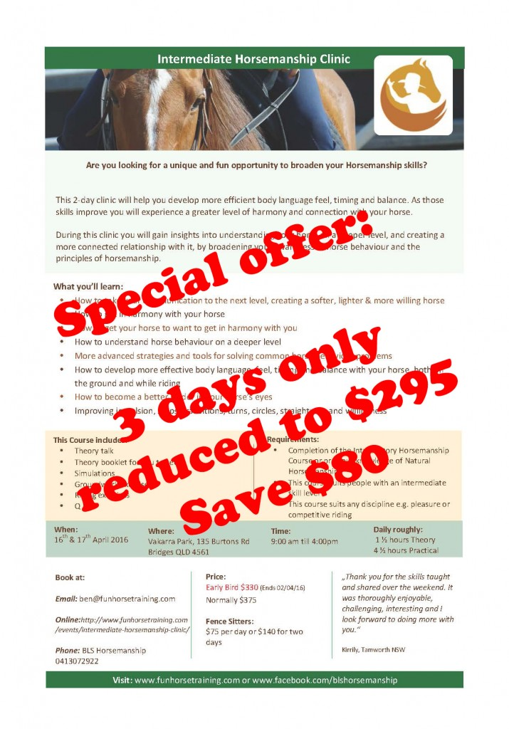Special offer – Intermediate Horsemanship clinic reduced to $295