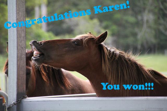 Winner of the Horsemanship Kit