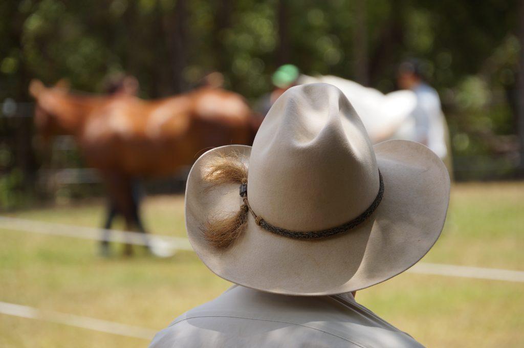 BLS-Horsemanship-blog